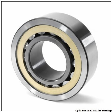 FAG NJ313-E-M1-C4  Cylindrical Roller Bearings