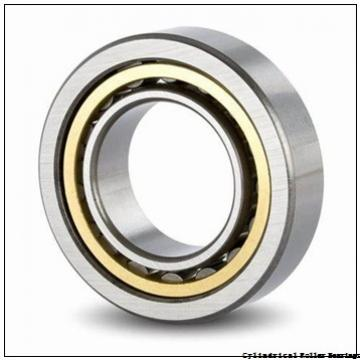 160 mm x 290 mm x 48 mm  FAG NUP232-E-M1  Cylindrical Roller Bearings
