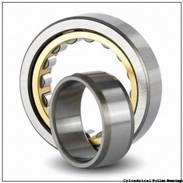 FAG NJ315-E-M1-C4  Cylindrical Roller Bearings #2 image